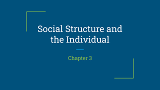 Ch. 3 Social Structure and the