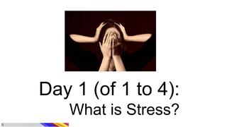 Stress Chunk #1