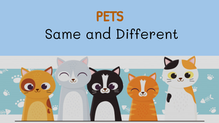 Pets - Same and Different