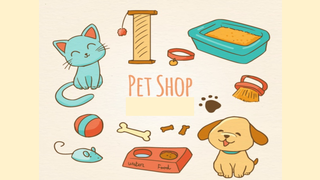 Pets - Dog and Cat