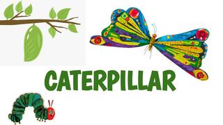 Caterpillar- Worksheet 4