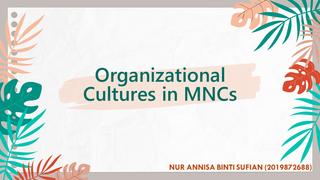 ORGANIZATIONAL CULTURES IN MNC