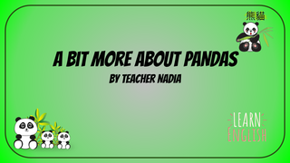 video slide panda