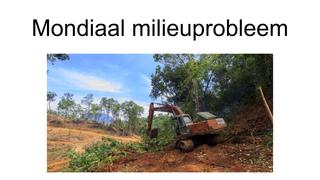 mondiaal milieuprobleem