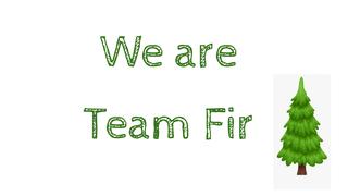 Welcome to Team Fir!