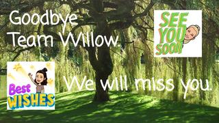 Goodbye Wonderful Willow