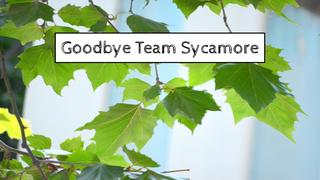 Goodbye Team Sycamore