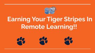 TigerStripesRemoteLearning