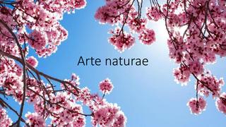 Arte Naturae