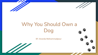 Why You Should Own a Dog