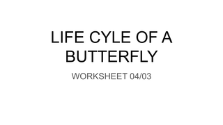 WORKSHEET 04/03: LIFE CYLE OF