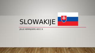 Landenstudie Slowakije 2