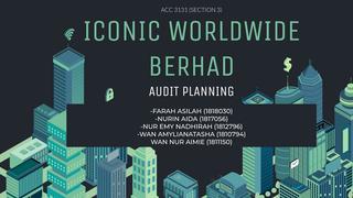 Audit Group Project Slides