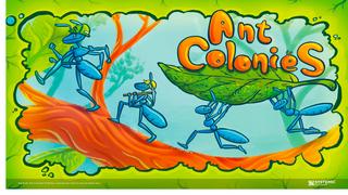 Ant Colonies