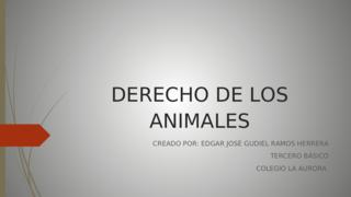 DERECHOS A LOS ANIMALES