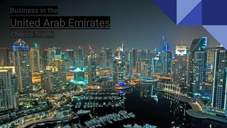 Business in the  United Arab E
