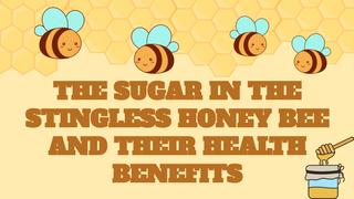 Healthy sugar origin in stingl