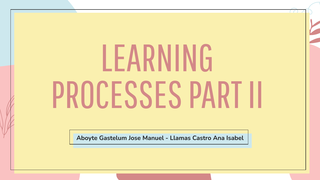 Learning processes part II