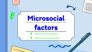 Microsocial Factors